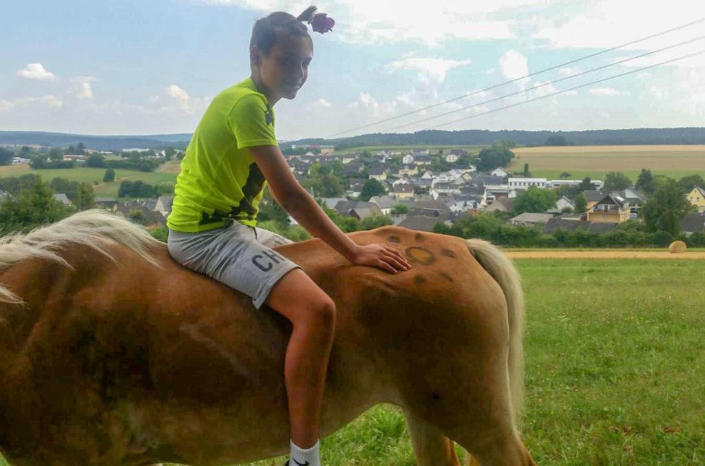 Aktivhof Oelsberg - Ferienprojektwoche 2019 - Hautnah am Pferd - Nachmittagsprogramm - Unsere Stute Lynda (braun) gestorben März 2019
